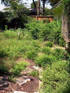 Zanthan Gardens July 22, 2007