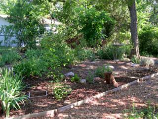 garden week 26