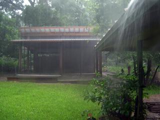 Zanthan Gardens Week 30