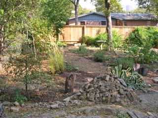 Zanthan Gardens: Week 44