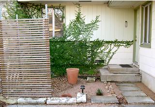 photo: Courtyard Garden 2004-12-21