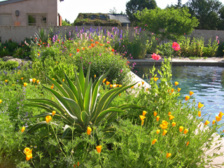 Stocker Garden