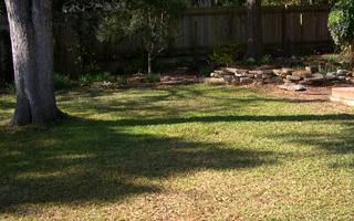 Zanthan Gardens lawn