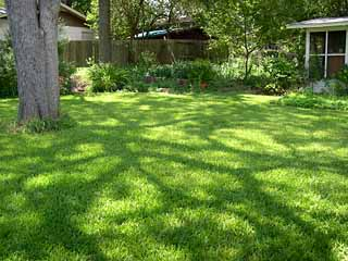 photo: Zanthan Gardens a mowed lawn