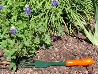Rumford Gardener mini-rake