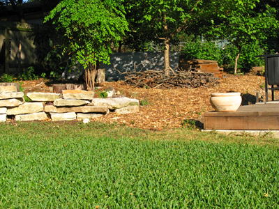 Zanthan Gardens Week 25