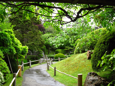 Japanese Garden Strolling