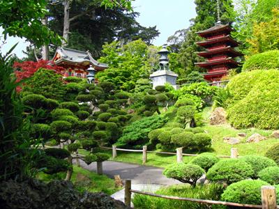 Japanese Garden Texture