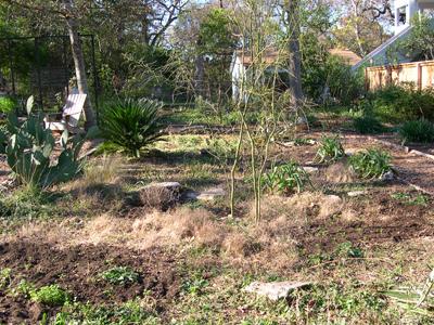 Zanthan Gardens meadow