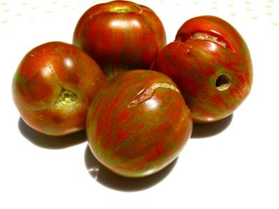 tomato Red Zebra