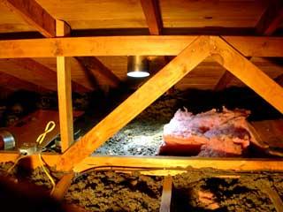 attic crawlspace